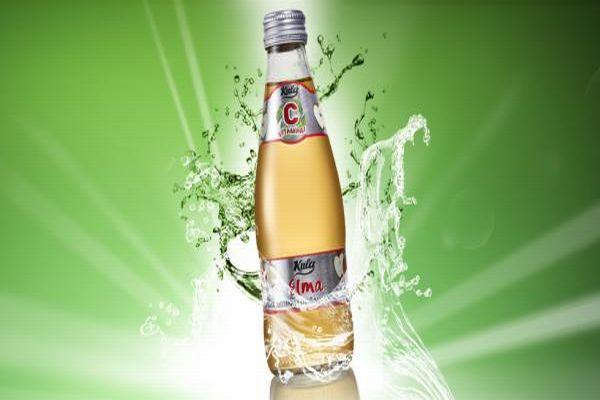 Elma C Vitaminli 250 ml. Doğal Maden Suyu (Vida Kapak)